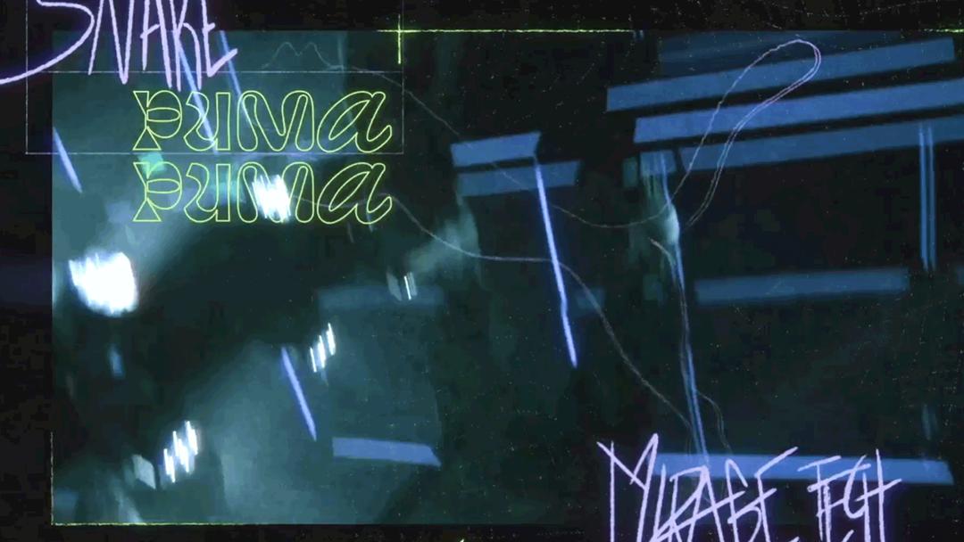 PUMA DJ Snake